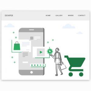 فروشگاه دنیپر و گوگل